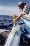 Rodney Norford aboard Reel Quick, 120 Kg Black Marlin caught on a