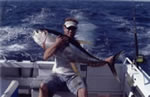 Wade Norman on Far Out captured a 30 Kg Yellowfin during 2004 White Sands Tournament with a