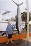 "Steve Gill with a 135 Kg Striped Marlin on ""Little Dingo"" lure. (19kb)"