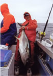 ANGLER: Crash Blamey. SPEICES: Yellowfin Tuna. WEIGHT: 66 Kg.