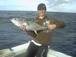 ANGLER: Phil Parkison SPECIES: Yellowfin Tuna WEIGHT: Est. 5-10 Kg
